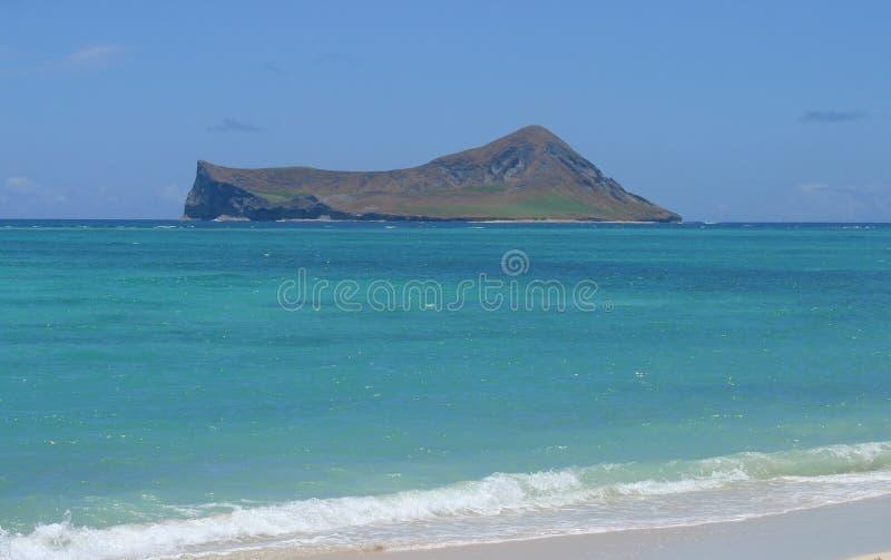 Insel Vom Ufer Kostenloses Stockfoto
