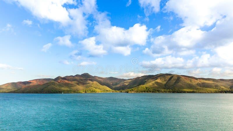 Insel von Kiefern stockbilder