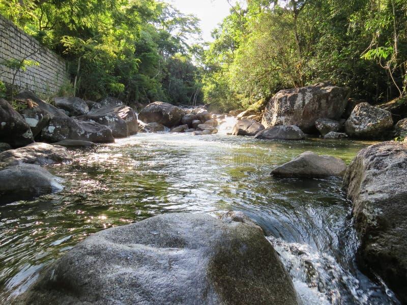 Insenatura con la piccola cascata nella foresta fotografia stock