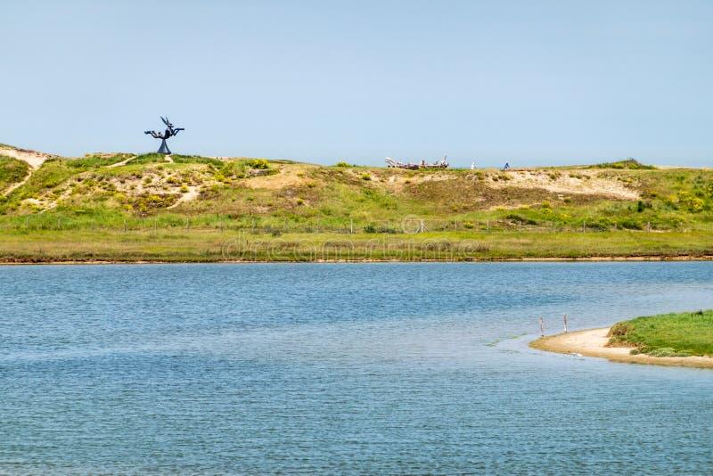 Insenatura dell'acqua salata del rifugio dell'uccello di Zwin, Knokke-furto, Fiandre, Belgio fotografia stock libera da diritti