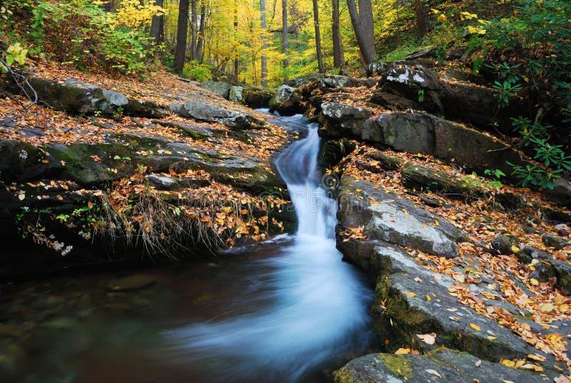 Insenatura della montagna di autunno immagine stock