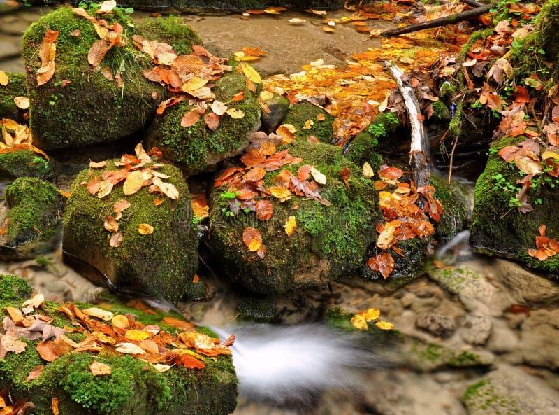 Insenatura di autunno immagini stock