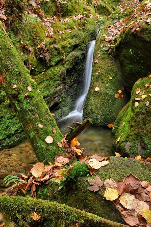 Insenatura di autunno fotografie stock libere da diritti