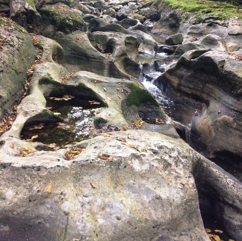 Insenatura di pietra nella foresta fotografie stock