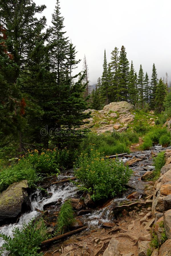 Insenatura in Rocky Mountain National Park, Colorado di Tyndall fotografie stock libere da diritti