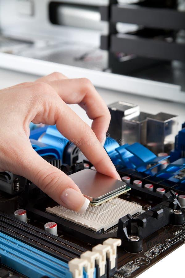 Inserción de la CPU, procesador en la placa madre foto de archivo