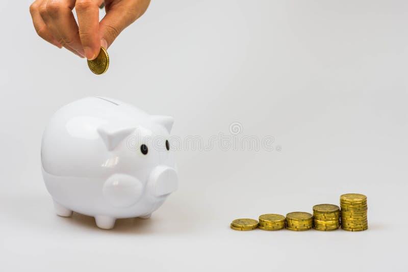 Inserendo una moneta in un porcellino salvadanaio isolato su un fondo bianco fotografie stock