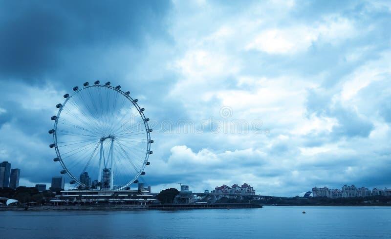 Inseto de Singapura fotos de stock royalty free