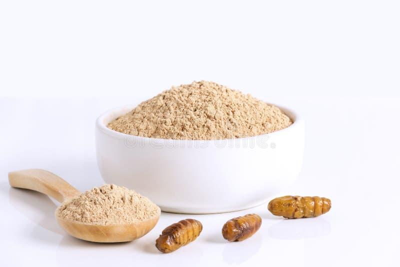 Insetos do pó de Mori Flour do Bombyx das crisálidas do bicho-da-seda para comer como os alimentos feitos da carne cozinhada do i imagem de stock royalty free