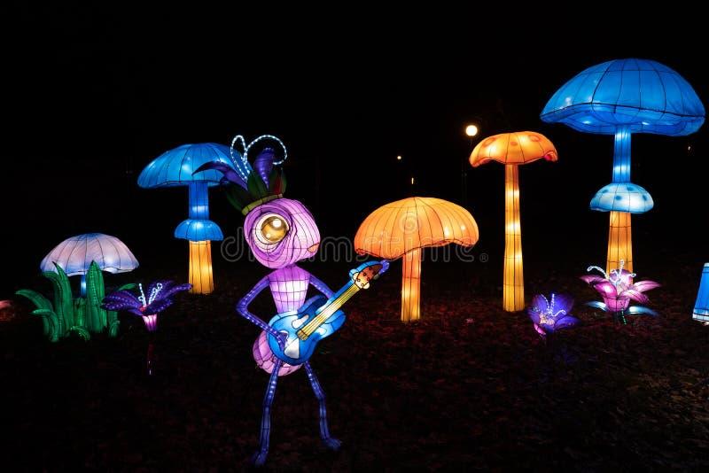 Insetos Guitaristas e Cogumelos no Festival de Luz Chinês imagem de stock