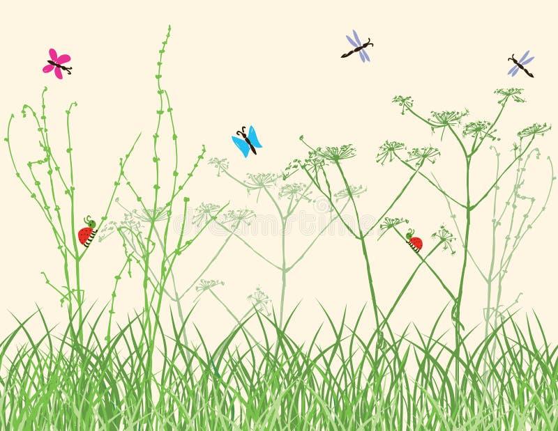 Insetti nell'erba su un prato di estate illustrazione vettoriale