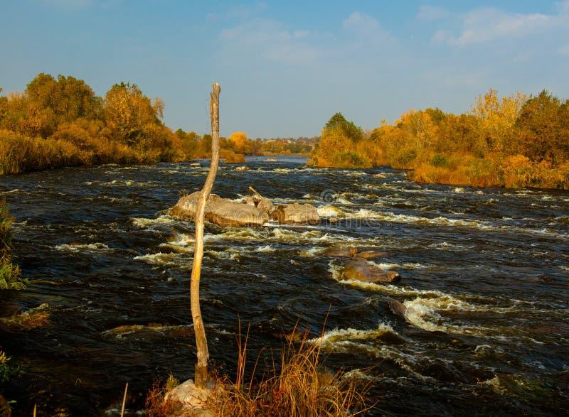 Insetto del sud Ucraina del fiume della montagna fotografia stock