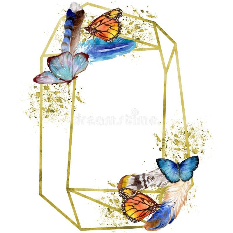 Insetto selvaggio delle farfalle esotiche in uno stile dell'acquerello Quadrato dell'ornamento del confine della pagina royalty illustrazione gratis