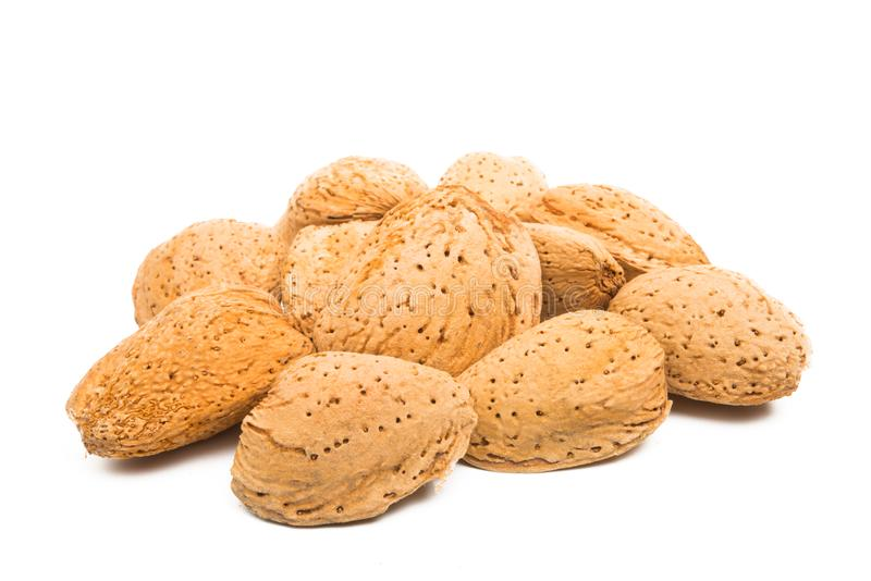 Inshell almond isolated. On white background royalty free stock image