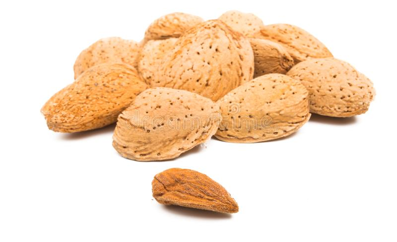 Inshell almond isolated. On white background stock photos