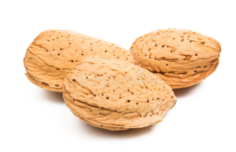 Inshell almond isolated. On white background stock photo