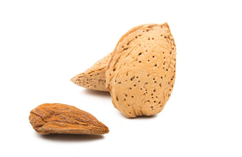 Inshell almond isolated. On white background stock images