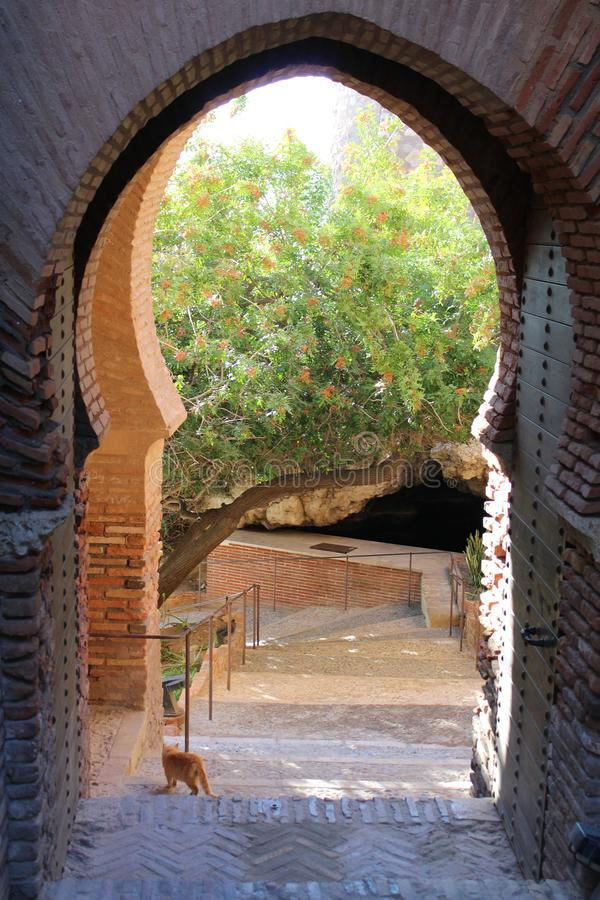 Inside of ancient castle. With stairs and gardens stock photography