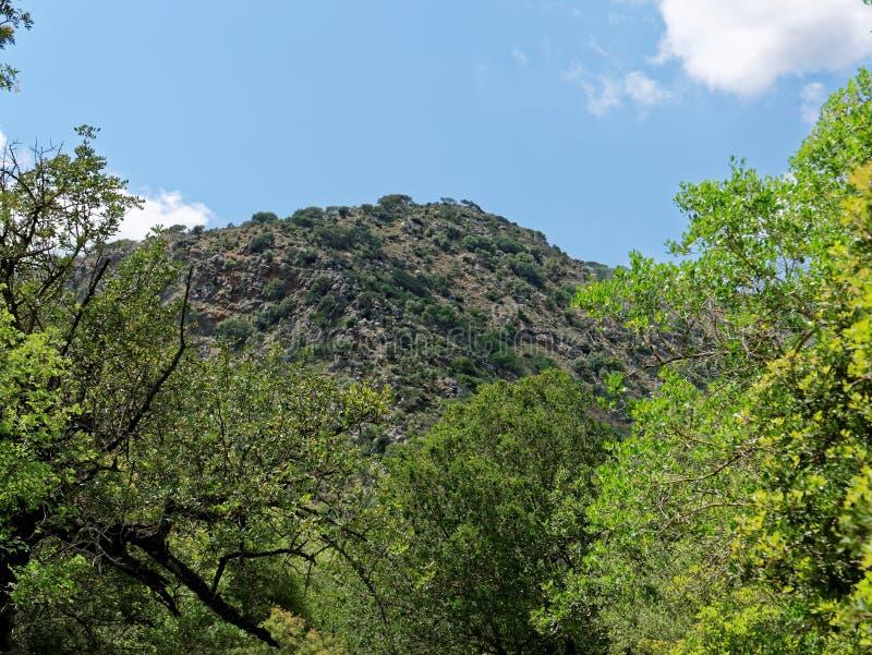 Inside Aposelemi Gorge on Crete stock photography