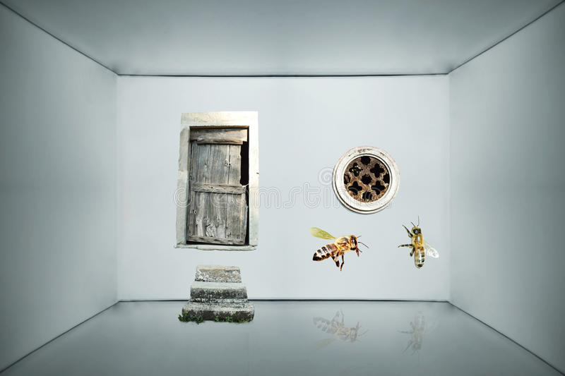 Download Inside a box stock photo. Image of surrealism, imagination - 26484482