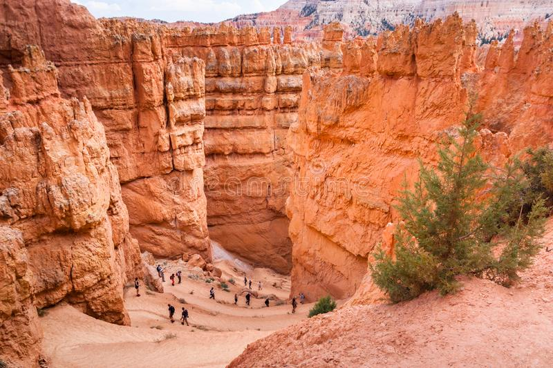 Winding serpentine course in Bryce Canyon. Inside Bryce Canyon, at the end of the Navajos Loop trail, a winding serpentine course returns to the Rim Trail royalty free stock photos