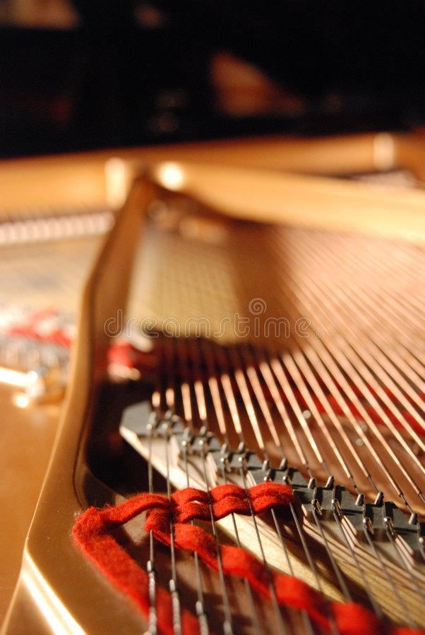 Download Inside a grand piano stock photo. Image of girls, decor - 2601286