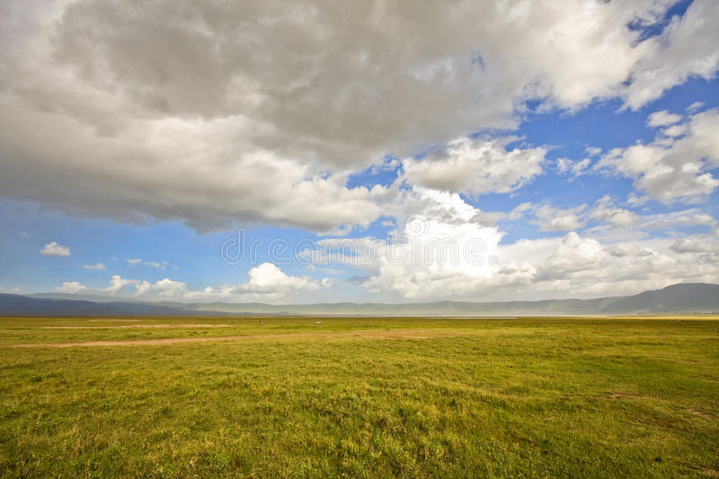 Inside Ngorongoro Crater royalty free stock images