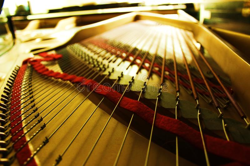 Inside of a concert grand piano. Inside a concert grand piano you'll find a beautiful gold with red felt ribbons and wire to each hammer royalty free stock photo