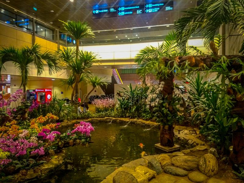 Inside view of Singapore airport having a small garden, Garden at Singapore airport, Green garden at airport. Inside view of Singapore airport having a small royalty free stock photo
