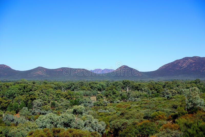 Inside Wilpena Pound, Flinders Ranges. Part of the iconic Wilpena Pound in South Australia's Flinders Ranges, photographed from a ridge looking inside the pound royalty free stock photo