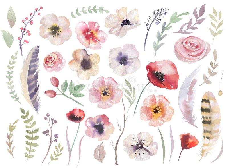 Insieme acquerello di boho dei fiori Raccolta dell'annata di Flloral royalty illustrazione gratis