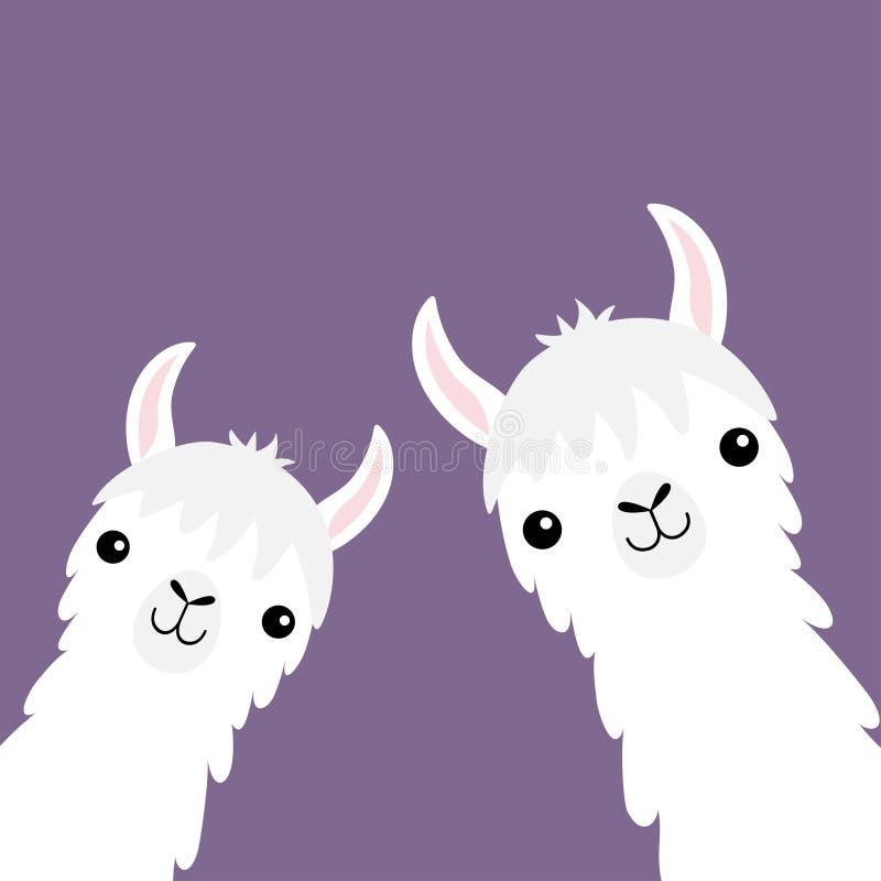 Insieme animale dell'alpaga del lama Collo del fronte Pelliccia lanuginosa dei capelli Carattere divertente di kawaii del fumetto illustrazione vettoriale