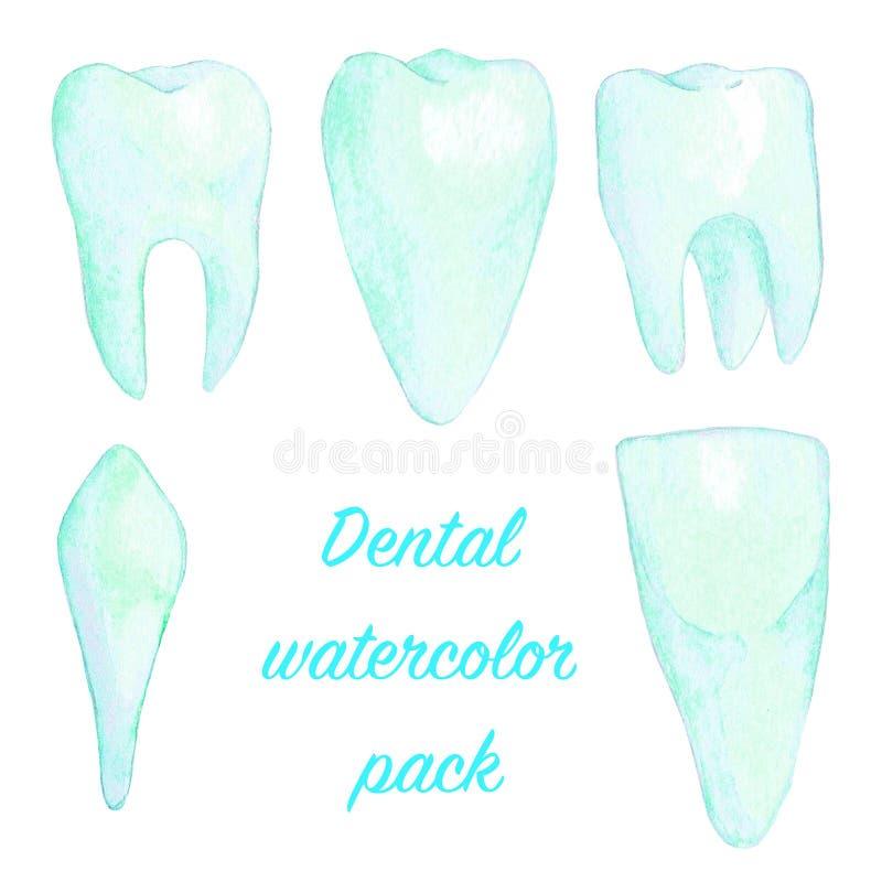 Insieme blu-chiaro dell'illustrazione dei denti dell'acquerello royalty illustrazione gratis