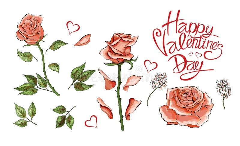 Insieme colorato degli elementi disegnati a mano dell'illustrazione delle rose di rosa illustrazione di stock
