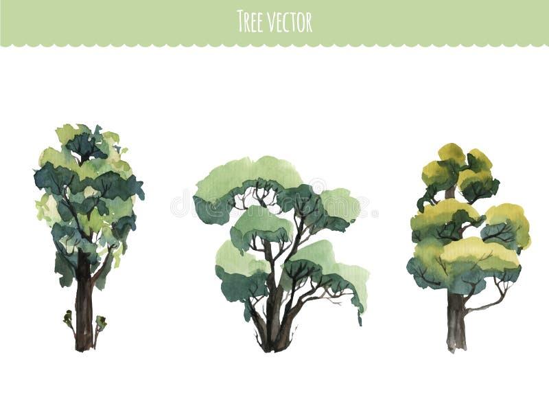 Insieme degli alberi dell'acquerello Illustrazione di vettore illustrazione vettoriale