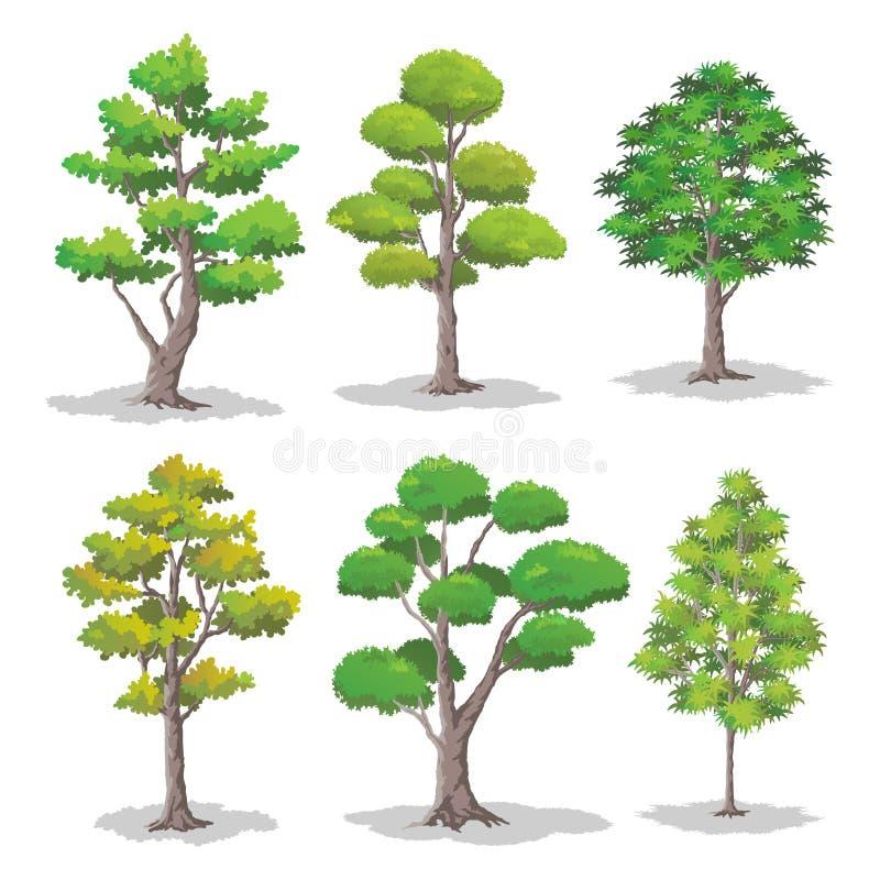 Insieme degli alberi, illustrazione naturale di vettore illustrazione di stock