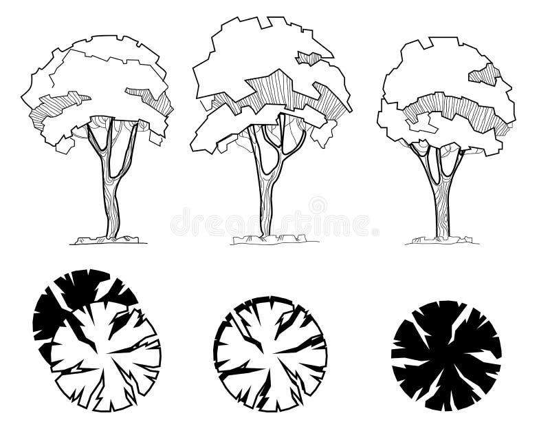 Insieme degli alberi per i disegni architettonici del paesaggio e della decorazione Caratteristiche esteriori Vista superiore dir illustrazione di stock
