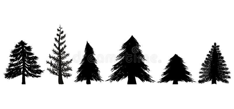Insieme degli alberi sempreverdi illustrazione di stock for Alberi sempreverdi