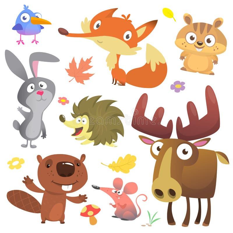 Insieme degli animali svegli del terreno boscoso isolati su fondo bianco St degli animali del fumetto illustrazione vettoriale