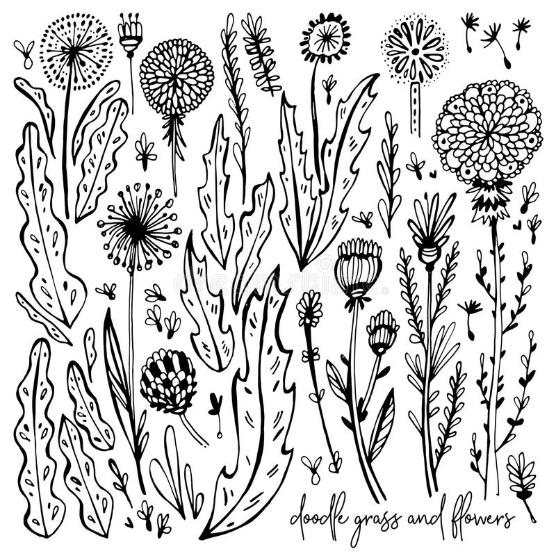 Insieme degli elementi in bianco e nero di scarabocchio Denti di leone, erba, cespugli, foglie, fiori Illustrazione di vettore, g royalty illustrazione gratis