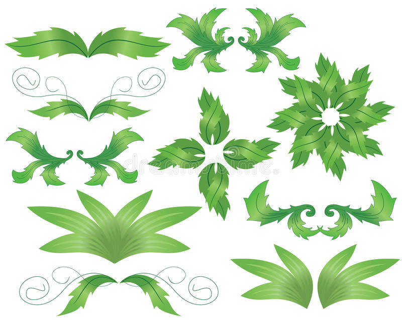 Insieme degli elementi decorativi di erbe per il disegno illustrazione di stock