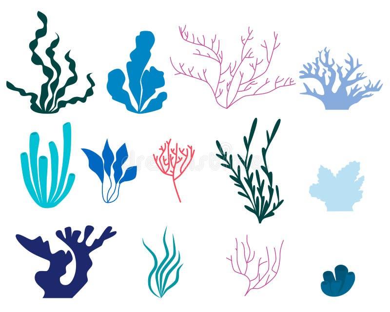 Insieme degli elementi di alga e di corallo illustrazione vettoriale