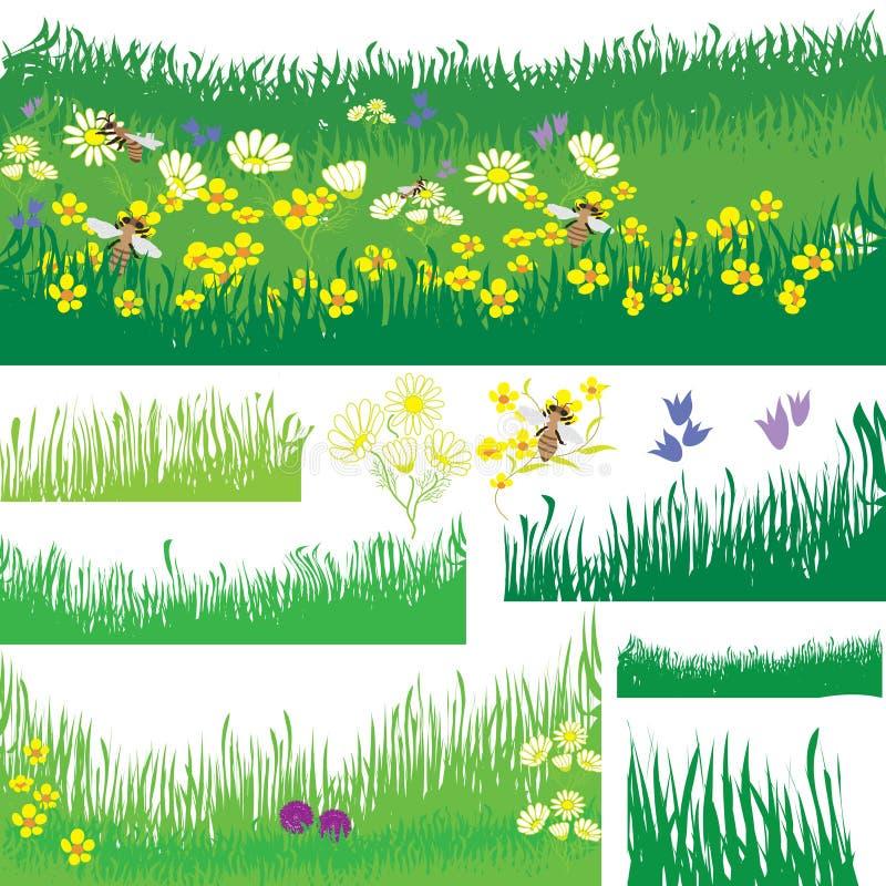 Insieme degli elementi di disegno con erba, i fiori e l'ape illustrazione vettoriale