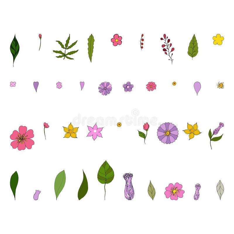 Insieme degli elementi floreali Illustrazione della corona fatta dei fiori e delle erbe Fiori e foglia decorativi di vettore illustrazione vettoriale
