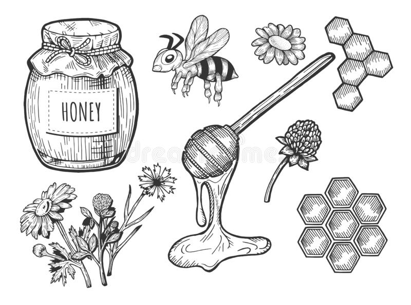 Insieme degli oggetti del miele royalty illustrazione gratis