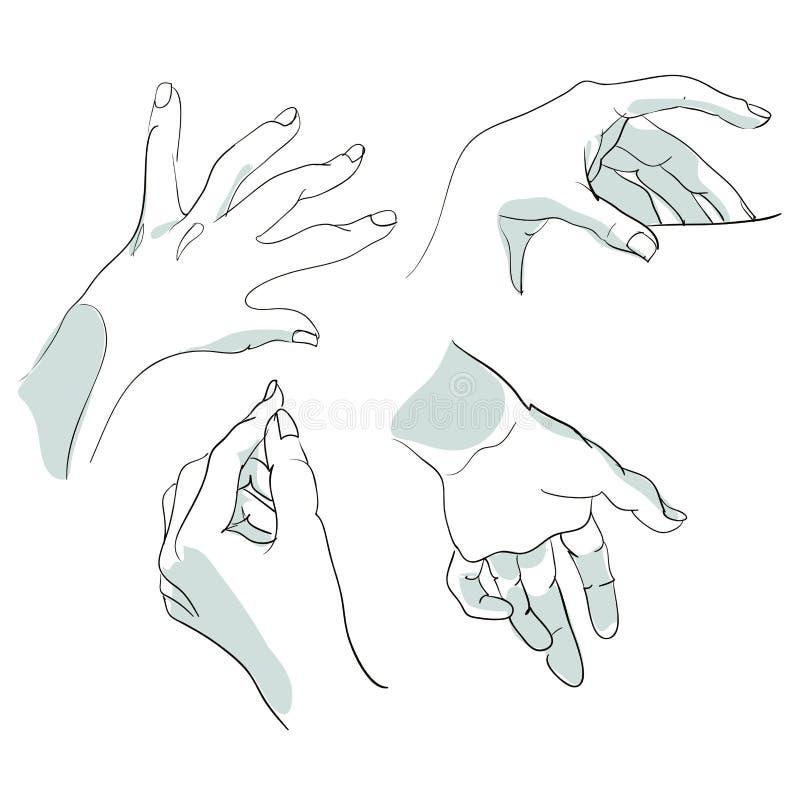 Insieme degli schizzi delle mani nelle posizioni differenti Illustrazione di vettore immagine stock