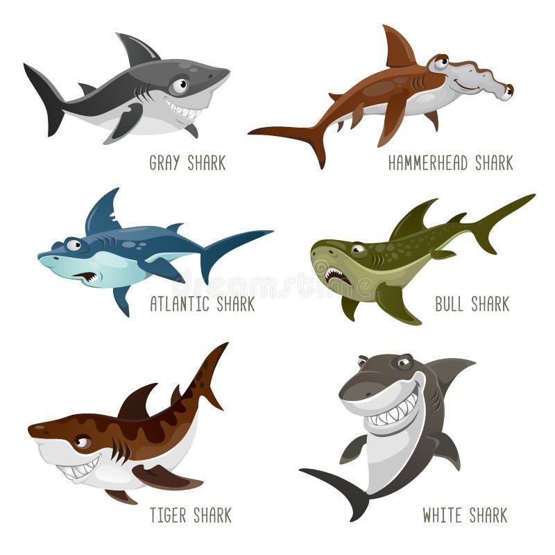 Insieme degli squali del fumetto con differenti emozioni isolati su bianco illustrazione di stock