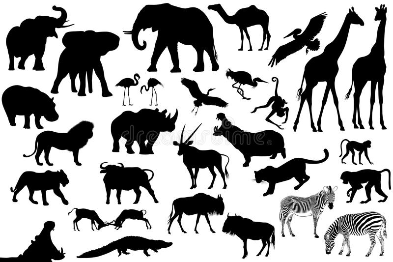 Insieme dei animales dell'Africa royalty illustrazione gratis