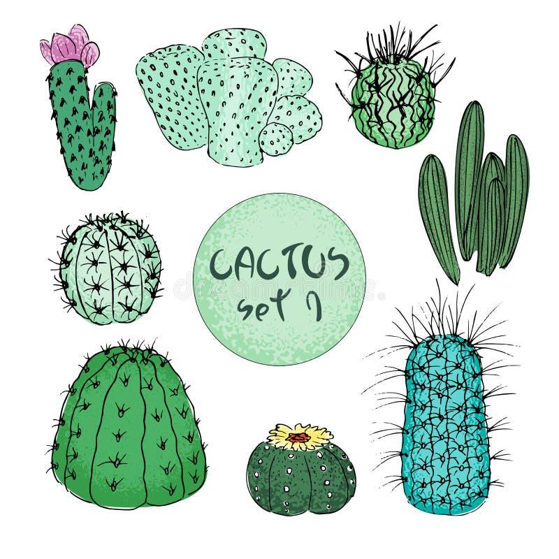 Insieme dei cactus colorati, illustrazione disegnata a mano di vettore Schizzo del profilo Raccolta succulente illustrazione vettoriale