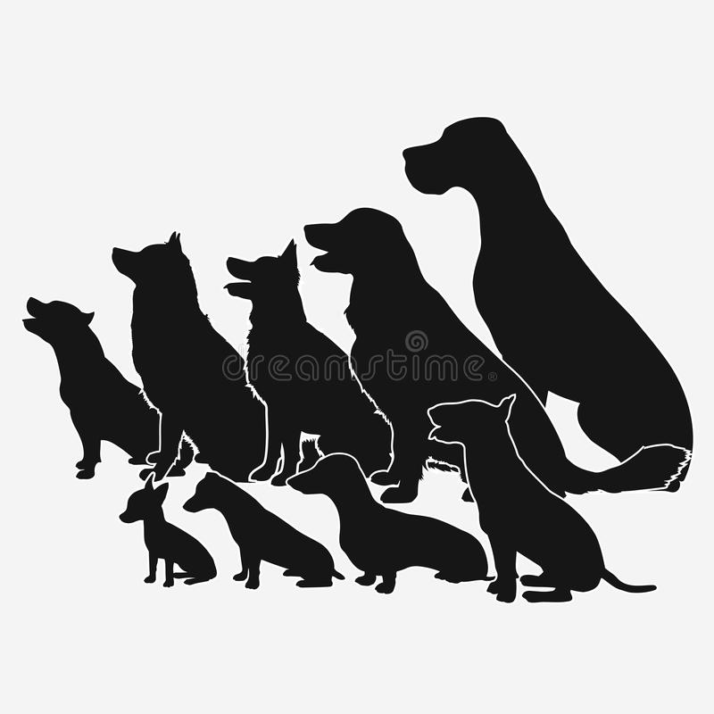 Insieme dei cani delle razze differenti, una collezione di siluette illustrazione di stock